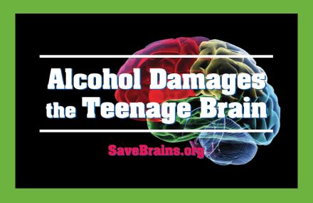 Save-Brains-Brochure-440x285
